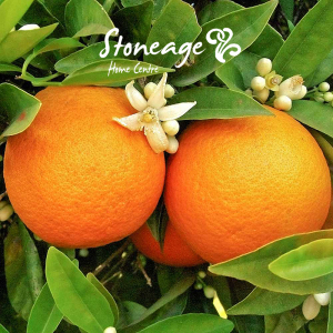 Stoneage-fruit-tree-1-300x300