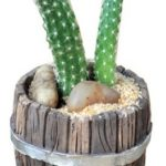 barrel-mini-planter-16569