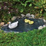 Duck pond - 10970