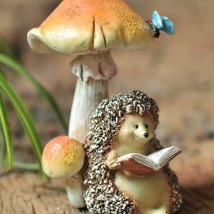 Hedgehog Mushroom - 10064