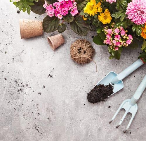 Garden DIY & Tools